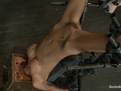 Gia DiMarco  Maestro in Hot skinny MILF with big tits, is bound in a custom metal device Brutally .
