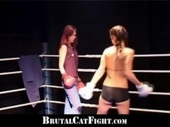Catfigh in the ring