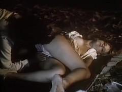 Ginger Lynn Allen, Lois Ayres, Bunny Bleu in vintage xxx movie