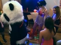 A student fuckfest invited panda