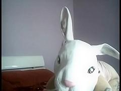 Donnie Darko fuckmeat porn on webcam