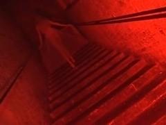 Fetish harlots Michelle B and vampire Renee Richards