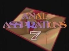 Anal Asspirations 7
