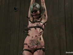Krysta Kaos in Warning: Brutal Play  This Scene Involves Intense Pain Play - DeviceBondage