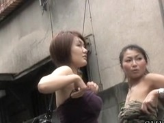 Cool boob sharking experience of some perky amorous vixen