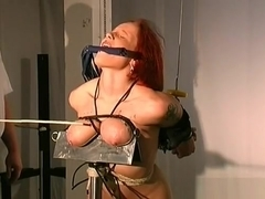 Amateur Sucks Dildos With Her Breasts Tied Up In Ropes