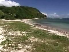 BBQ Breasty Bikini Beach Hottie A-Hole Group-Fucked