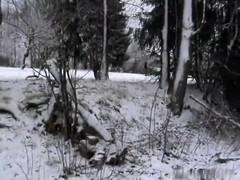 Honey public fucking in the snow