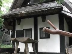 Cknz Old Vs Young-Preggy Outdoor Fuck (720p)