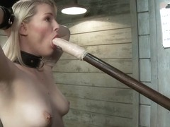 The Training of a Newbie Anal Slut Day One