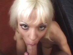 Golden-Haired bitch orally pleasures her lad