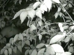 Cute coquette taking a piss in the bushes on cam