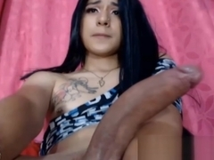 Beautiful Teen Tranny Stroking her Big Cock