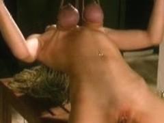 Tit Hang