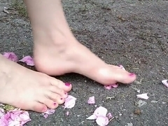 Roses twisted and crushed under barefeet