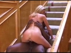 Creampied by a large dark meat stick