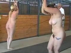 Barn Whippings