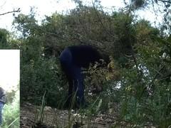 Girls Pissing voyeur video 158
