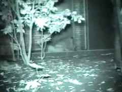 Voyeur films lovebirds having sex at night outside in clothing.