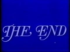 Swedish Erotica VHS vol. 33 (1981)