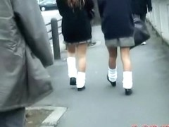 Two sexy schoolgirl getting involved in very interesting sharking scene