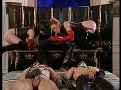 DBM - Orgy