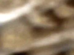 Videos cassettes #36