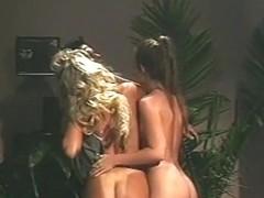 Sex Punk 2000