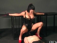 Mistress treats her sub boy to a blowjob and gives him a face full of pussy