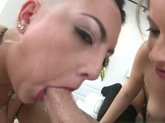 Fabulous pornstars Presley Hart, Rachael Madori, Mike Adriano in Hottest Blowjob, Pornstars porn video